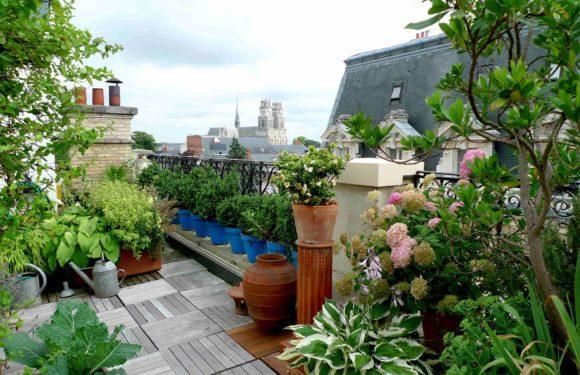 Des astuces de pro pour aménager un jardin