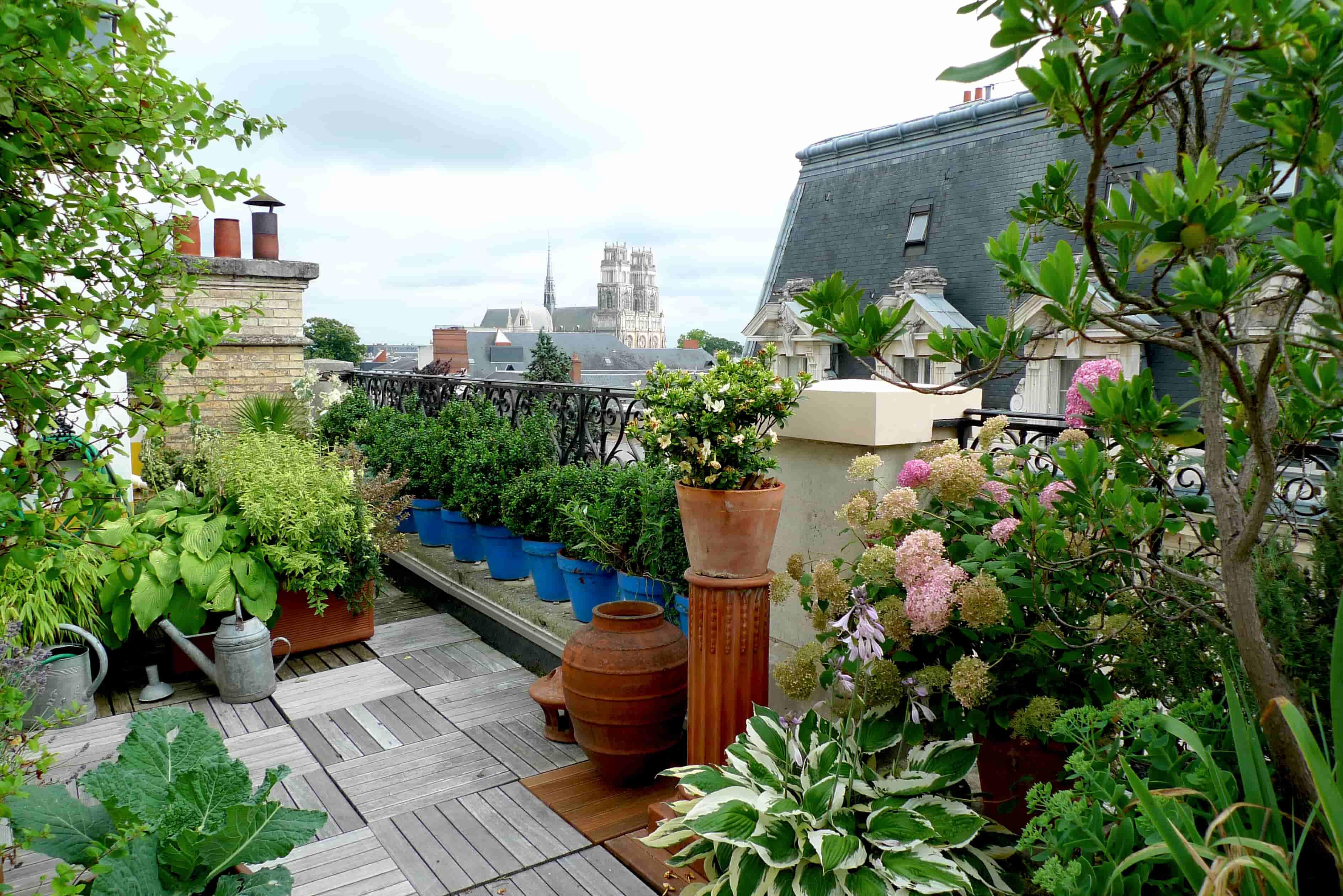 astuces amenager un jardin